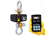 Wireless dynamometer